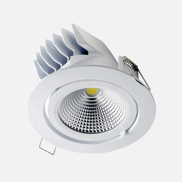 Prelux Pluto Adjustable Downlight