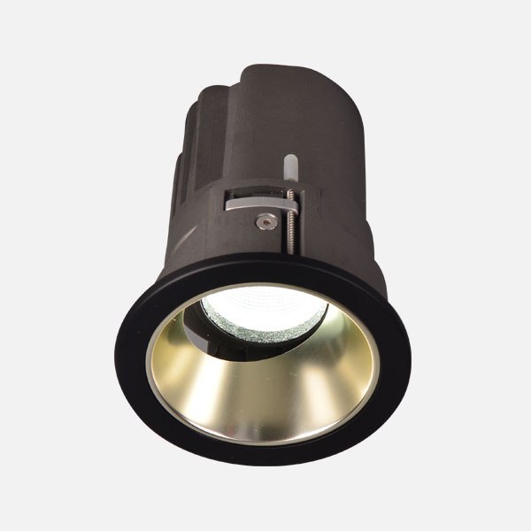 Prelux Bari Adjustable LED Downlight