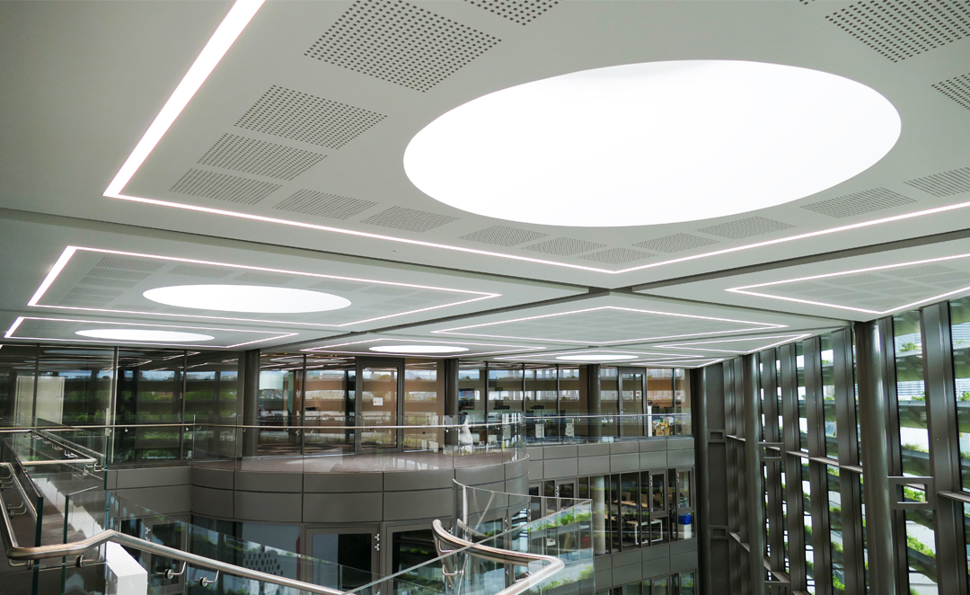 Roxo Lighting at Trinity Business School